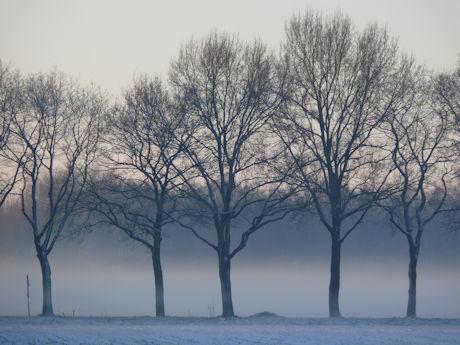 A winter 2 b