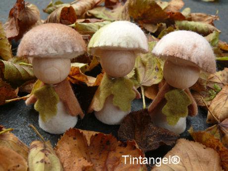 Bospaddenstoeltjes 2 blog