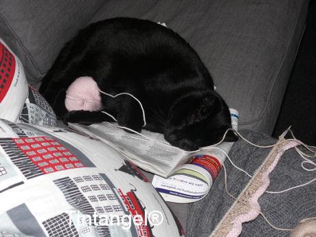 Figaro helpt