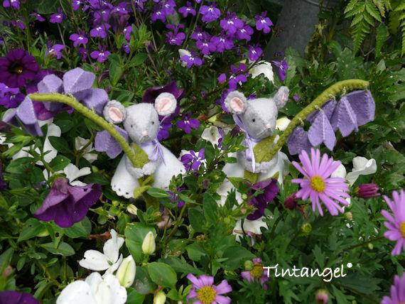 A Muisjes in de tuin