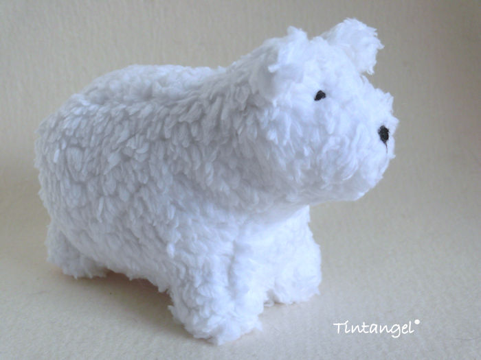 E ijsbeer d